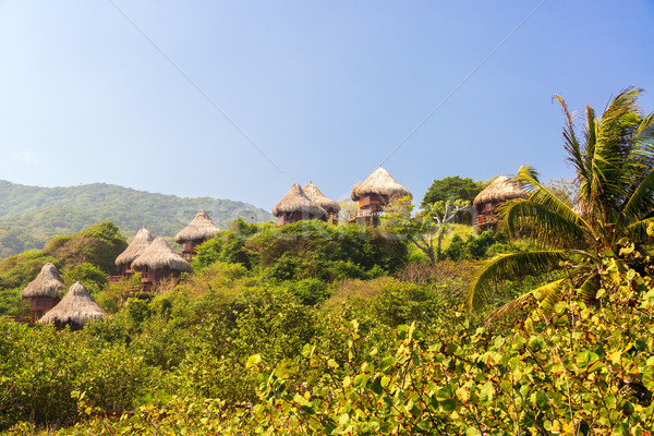 Rustic Huts in the Jungle Stock photo © jkraft5