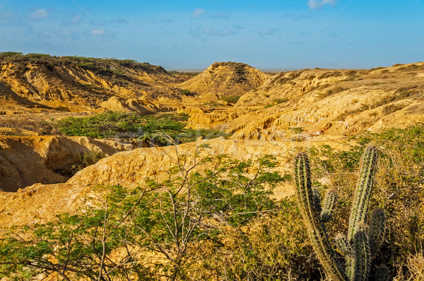 Desolate Desert Landscape Stock photo © jkraft5