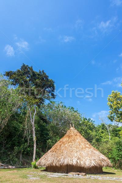 Indígena cabana simples casa indiano parque Foto stock © jkraft5