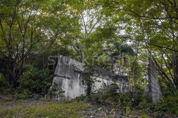 Jungle Ruins Stock photo © jkraft5