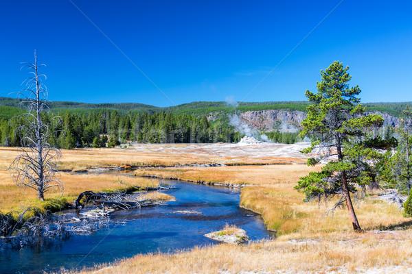Rivier landschap lopen geiser hemel water Stockfoto © jkraft5