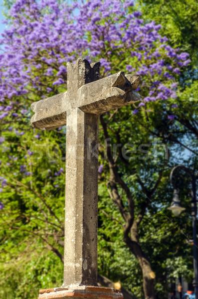 каменные крест Мехико Purple цветы деревья Сток-фото © jkraft5