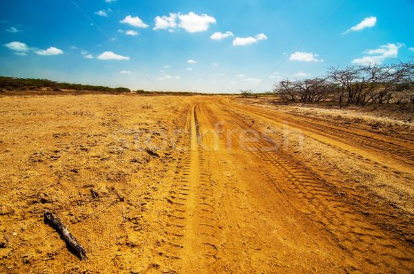 Onverharde weg woestijn goed gebruikt lopen Stockfoto © jkraft5