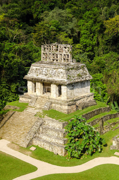 Mayan Temple Stock photo © jkraft5