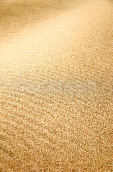 砂 テクスチャ ビーチ オレゴン州 自然 背景 ストックフォト © jkraft5