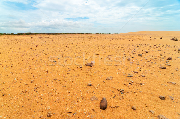Rock Strewn Desert Landscape Stock photo © jkraft5