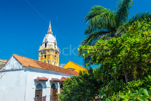 Cartagena Cathedral and Palm Tree Stock photo © jkraft5