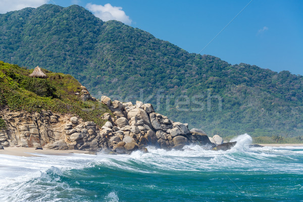 Beach and Green Hills Stock photo © jkraft5