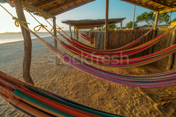 Colorful Beach Hammocks Stock photo © jkraft5