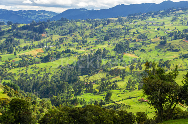 Colombian Countryside Stock photo © jkraft5