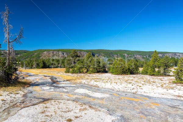 Geiser landschap water uitbarsting wolken Stockfoto © jkraft5