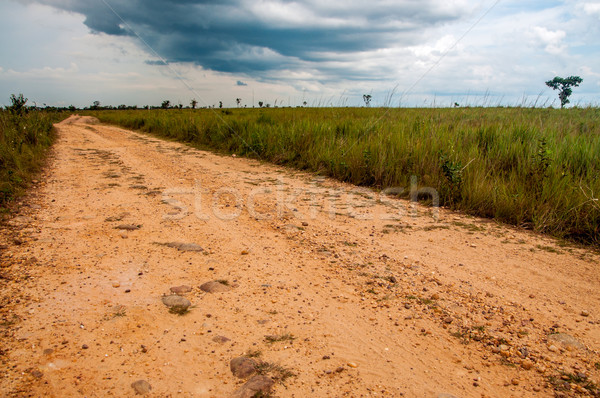 A Dirt Road in the Plains Stock photo © jkraft5