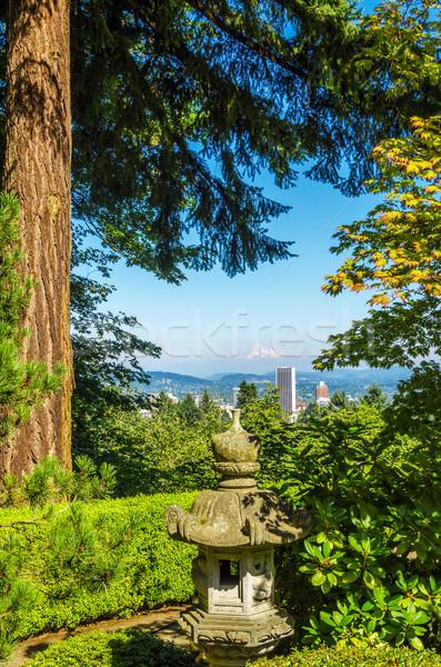Oregon Cityscape çam ağacı ofis dağ Stok fotoğraf © jkraft5