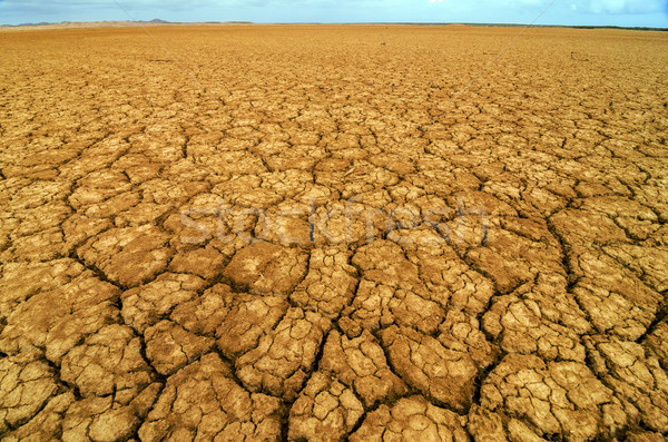 Dry Cracked Earth Stock photo © jkraft5