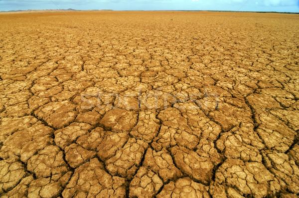 Zdjęcia stock: Wyschnięcia · pęknięty · ziemi · pustyni · Kolumbia · charakter