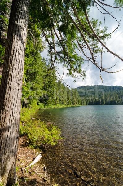 Alsó iker tó égbolt erdő tájkép Stock fotó © jkraft5