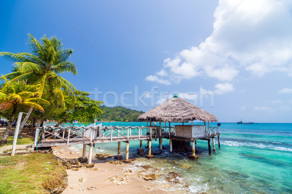 Small Wharf in Sapzurro Stock photo © jkraft5