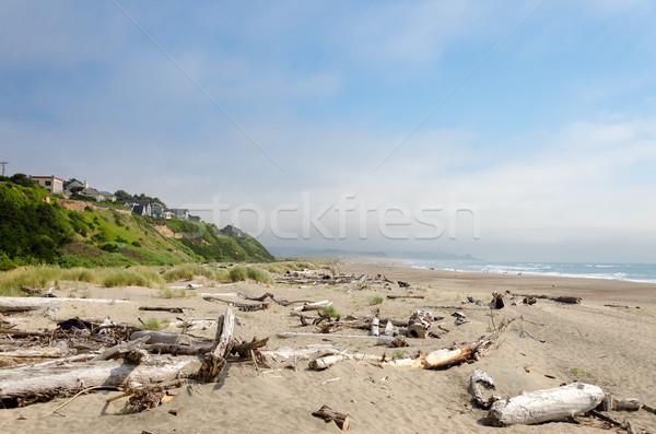 Lincoln City Beach Stock photo © jkraft5