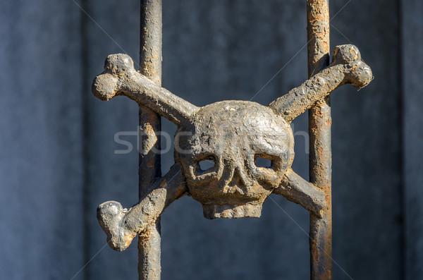Skull and Crossbones Stock photo © jkraft5