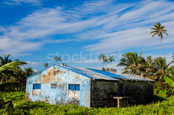 Damaged Blue Building in Green Lush Clearing Stock photo © jkraft5