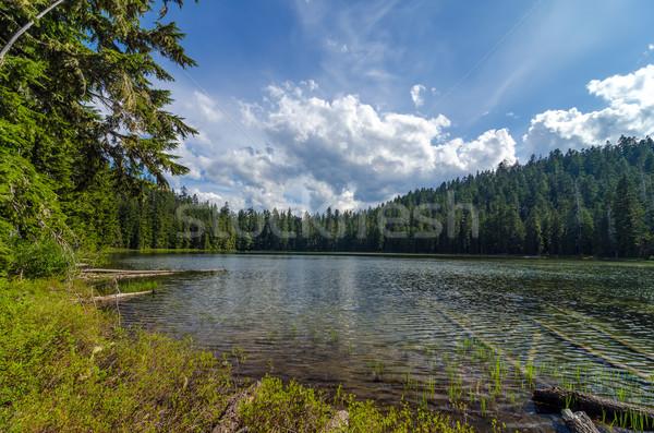 Twin lago cielo foresta panorama estate Foto d'archivio © jkraft5