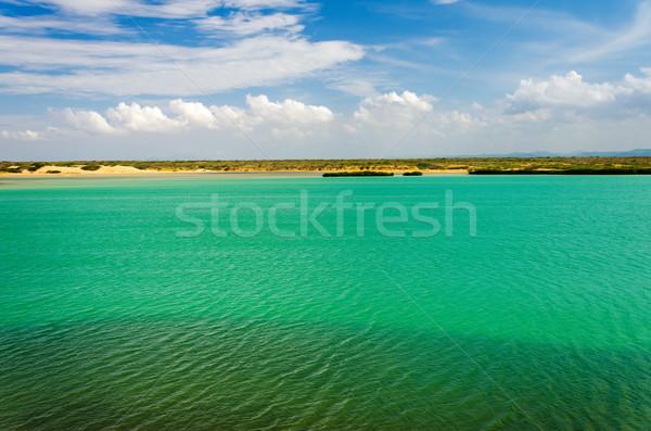 Deniz manzarası yeşil deniz mavi gökyüzü gökyüzü Stok fotoğraf © jkraft5