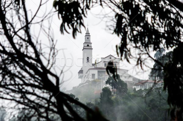 Ködös kilátás templom Bogotá Colombia fa Stock fotó © jkraft5