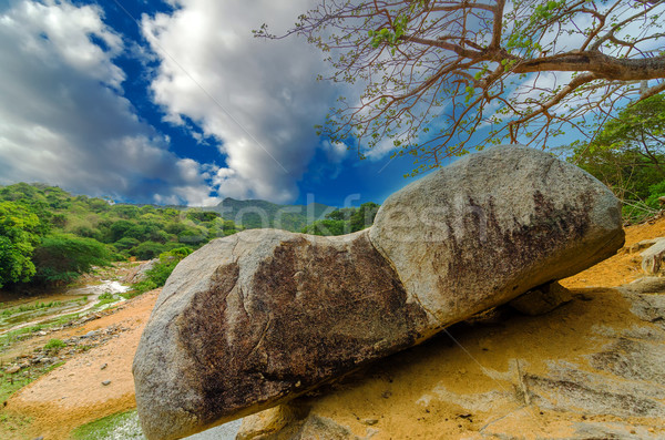 Boulder in a National Park Stock photo © jkraft5