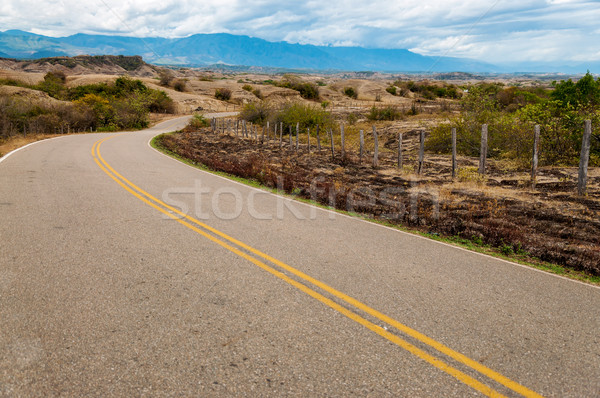 Long Winding Road Stock photo © jkraft5