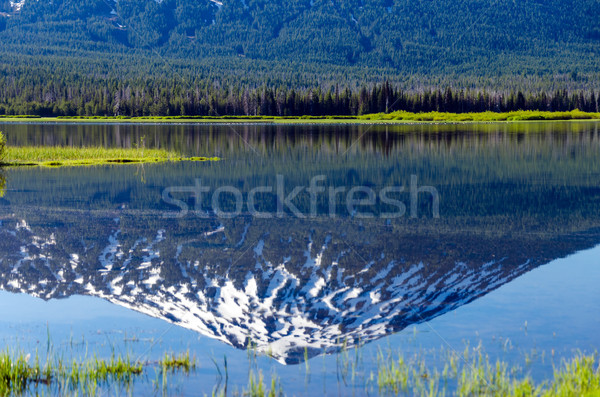 Mount Bachelor Reflection Stock photo © jkraft5