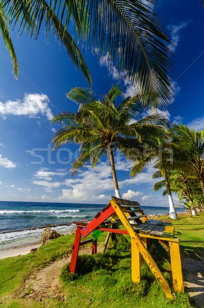 Kolorowy ławce Karaibów wybrzeża palm krajobraz Zdjęcia stock © jkraft5