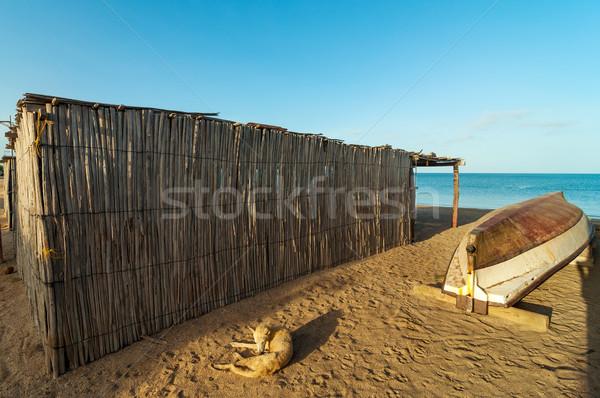 Beach Shack and Canoe Stock photo © jkraft5