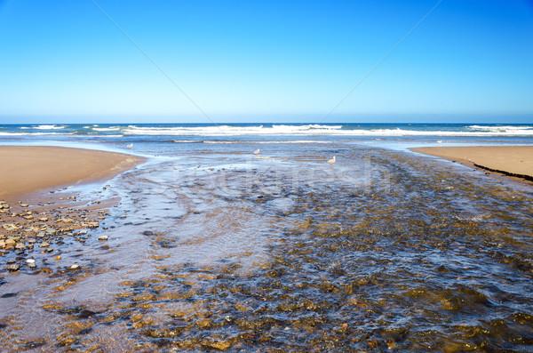 Ocean and River Stock photo © jkraft5