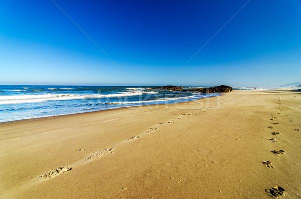 Oregon plaj şehir ayak izleri manzara Stok fotoğraf © jkraft5