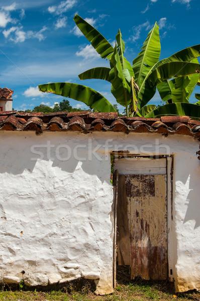 Eski beyaz duvar muz ağaç sömürge Stok fotoğraf © jkraft5