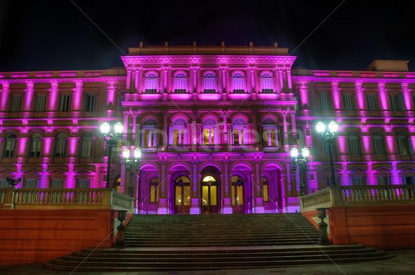 Huis overheid Argentinië roze Buenos Aires gebouw Stockfoto © jkraft5