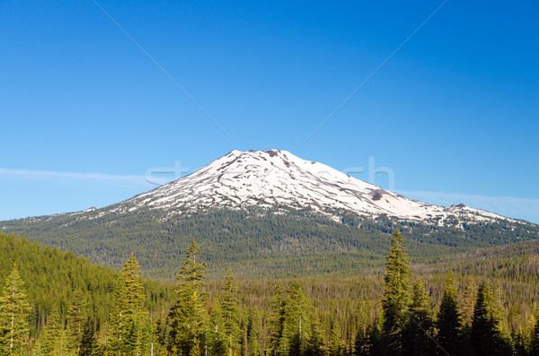 Mount Bachelor Stock photo © jkraft5
