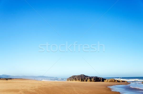 Sandy Beach Stock photo © jkraft5