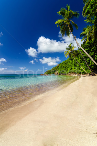 Stock photo: Deserted Beach