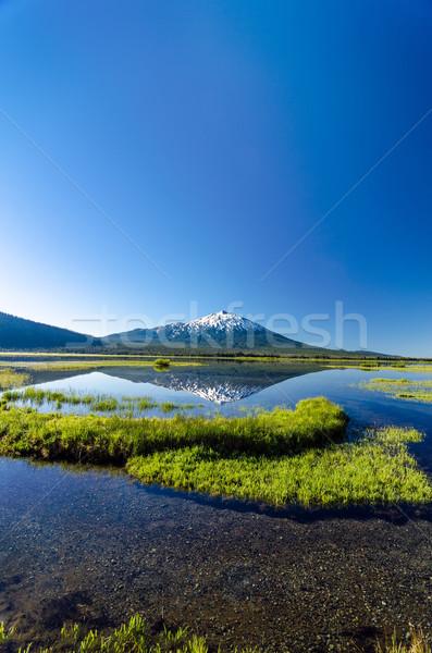 Vrijgezel verticaal reflectie shot meer Stockfoto © jkraft5
