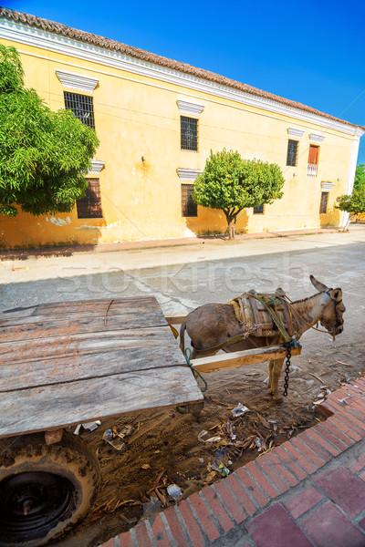 Donkey Cart and Building Stock photo © jkraft5