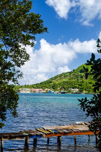 Velho doca ilha ver luxuriante Foto stock © jkraft5