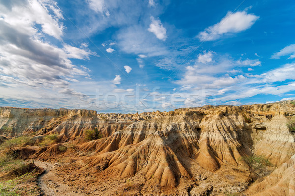 Desert Landscape Stock photo © jkraft5