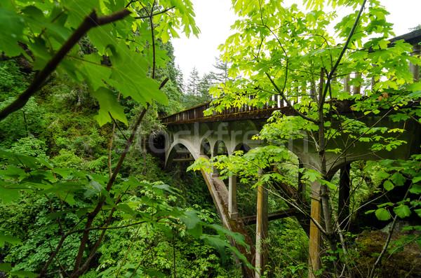 Ponte lussureggiante vegetazione storico autostrada 30 Foto d'archivio © jkraft5