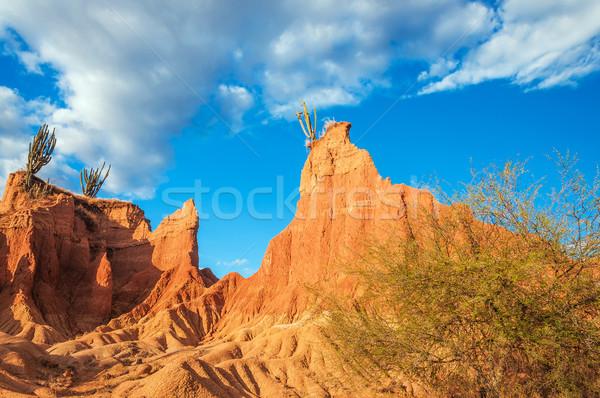 пейзаж пустыне Колумбия красный кактус небе Сток-фото © jkraft5