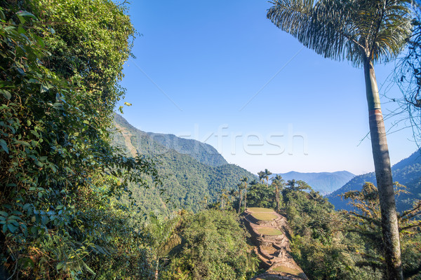 Colombia's Lost City Stock photo © jkraft5