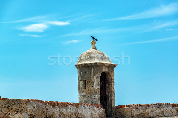 Cartagena Wall and Bird Stock photo © jkraft5