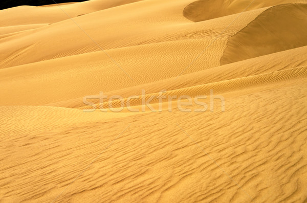 Stunning Sand Dune View Stock photo © jkraft5