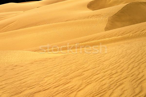 砂丘 表示 公園 ラ 自然 ストックフォト © jkraft5