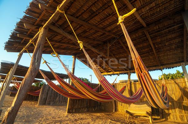 Colorido playa dorado luz sol mar Foto stock © jkraft5
